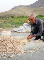 تقویت اقتصاد روستا با پساندازهای خرد