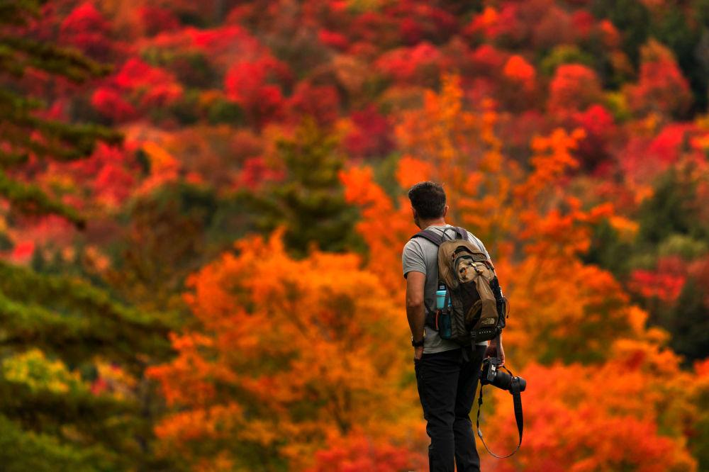 پاییز رنگی درگوشه و کنار جهان
