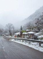هشدار پلیس راهور نسبت به بارش برف و باران و لغزندگی جادههای برونشهری