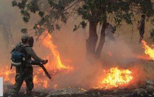 اطفای ۲۳ هکتار از عرصههای جنگلی گیلان طی دو روز