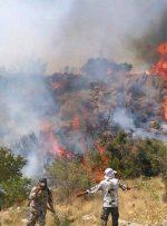 آتشسوزی عرصههای طبیعی یک تهدید دائمی در کشور است