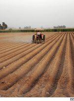 دولت بعدی باید چه اقداماتی در بخش کشاورزی انجام دهد؟