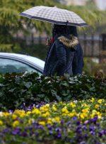 آخر هفته بارانی برخی استانها/ خیزش گرد و خاک در شرق کشور