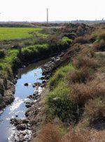 ورود کمیسیون اصل نود به پرونده کشت محصولات کشاورزی با آبهای آلوده